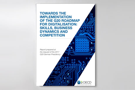 "Cover der Publikation ""Towards the implementation of the G20 Roadmap for Digitalisation: Skills, business dynamics and competition"""
