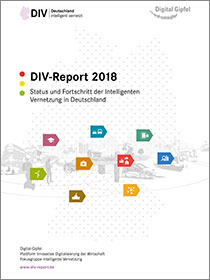 "Cover der Publikation ""DIV-Report 2018"""