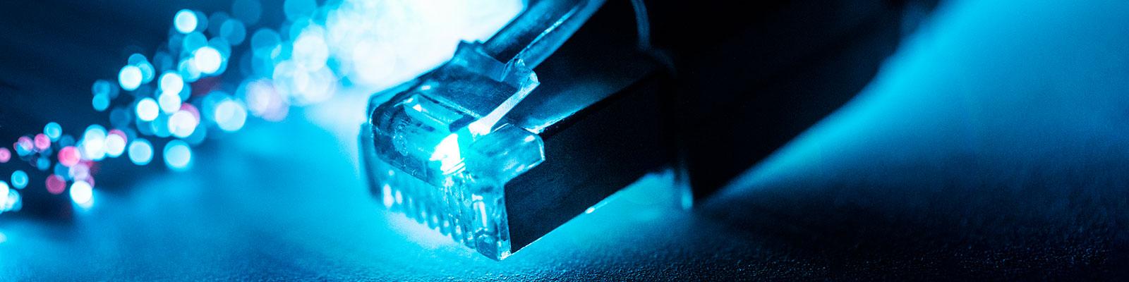 Netzwerkkabel zum Thema Netzpolitik; Quelle: dpa